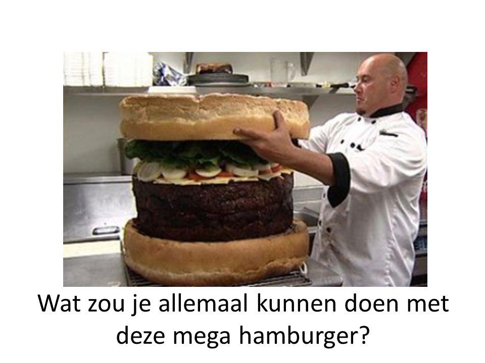 Wat zou je allemaal kunnen doen met deze mega hamburger?