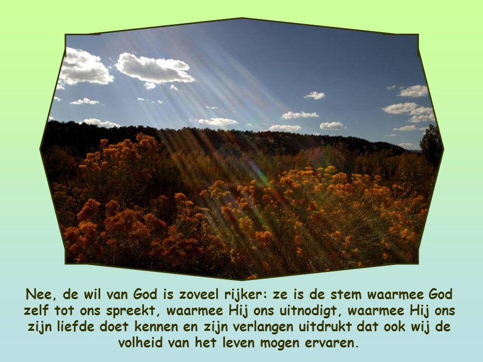 God wil dat we leven, moment voor moment, bewust en in volle overgave aan Hem. De wil van God is niet een oproep om te berusten in de dingen die moeil