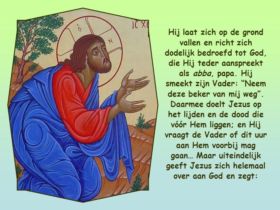 Jezus is in de Hof van Olijven, een olijfgaard bij Jeruzalem. Het verwachte uur is gekomen, het beslissende moment in Jezus' leven.