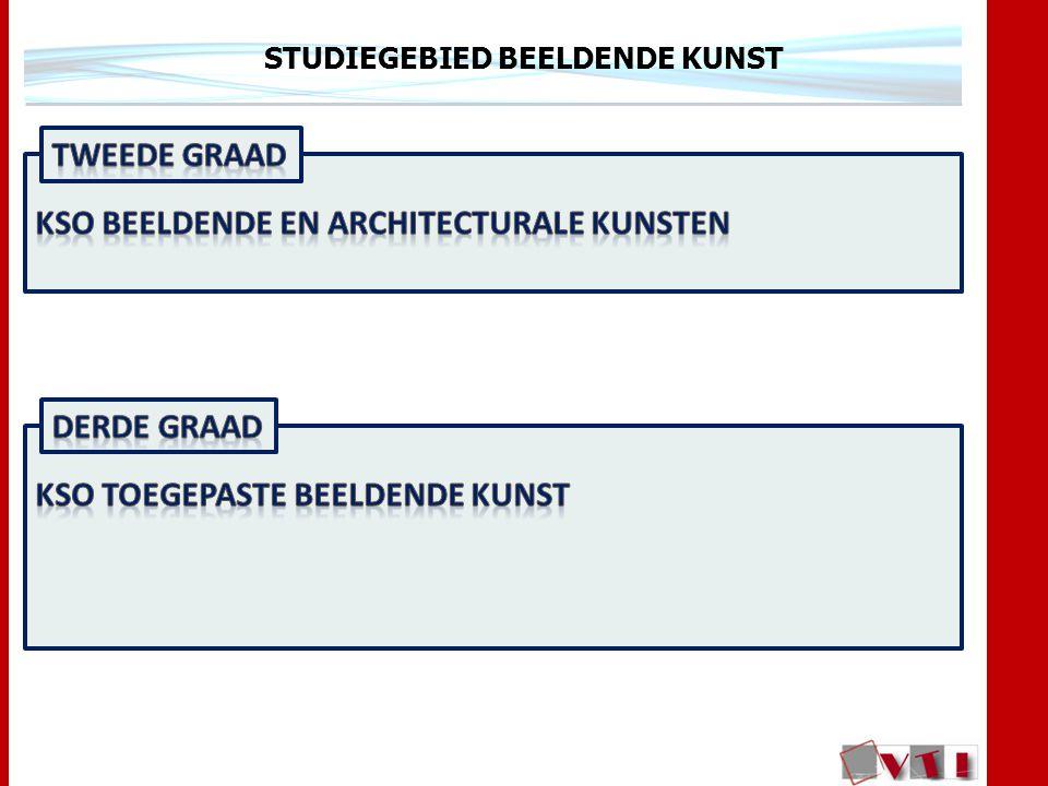 STUDIEGEBIED BEELDENDE KUNST