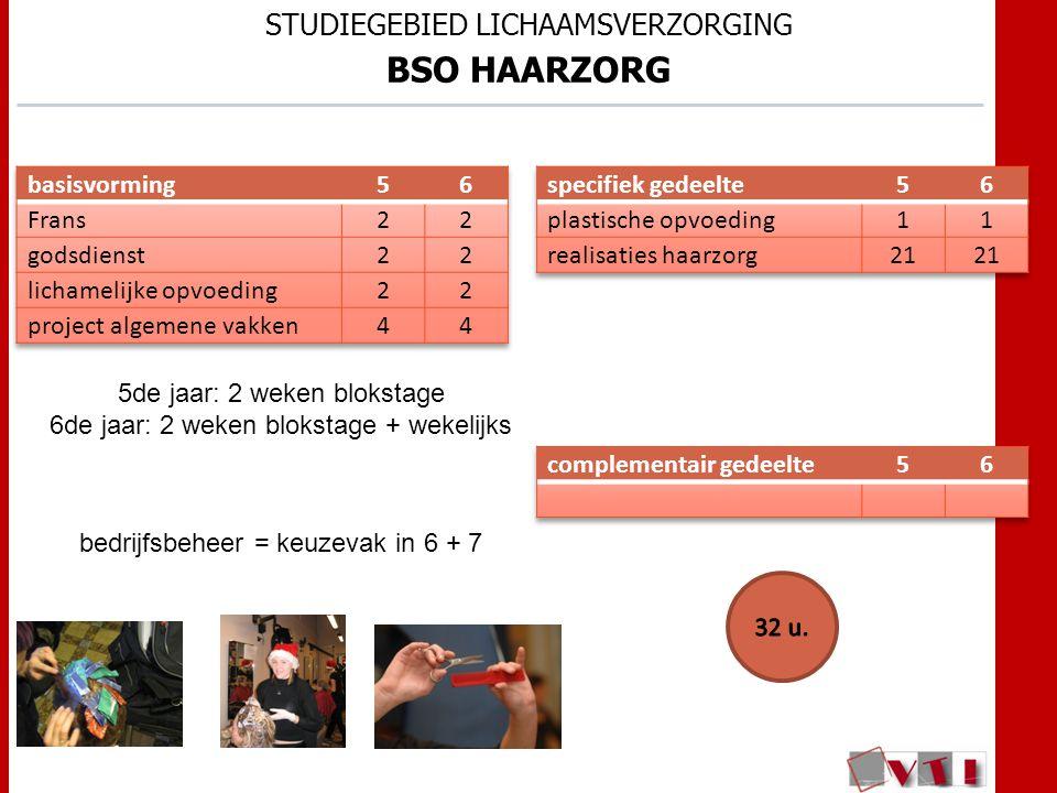 STUDIEGEBIED LICHAAMSVERZORGING BSO HAARZORG 5de jaar: 2 weken blokstage 6de jaar: 2 weken blokstage + wekelijks bedrijfsbeheer = keuzevak in 6 + 7