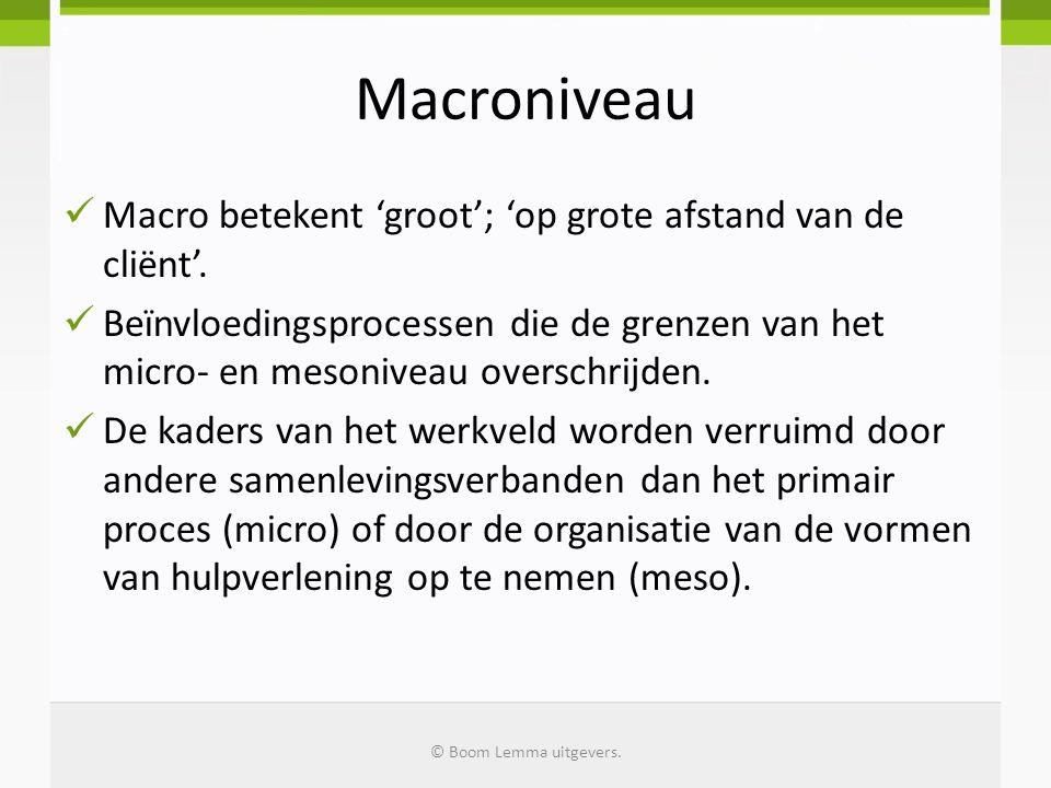 Macroniveau  Macro betekent 'groot'; 'op grote afstand van de cliënt'.