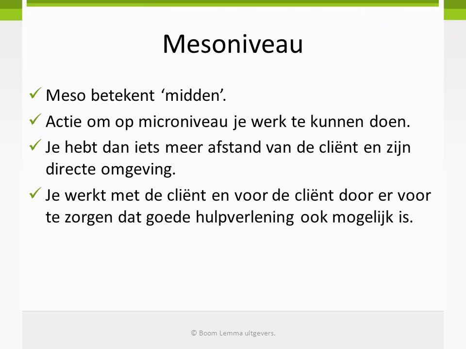 Mesoniveau  Meso betekent 'midden'. Actie om op microniveau je werk te kunnen doen.