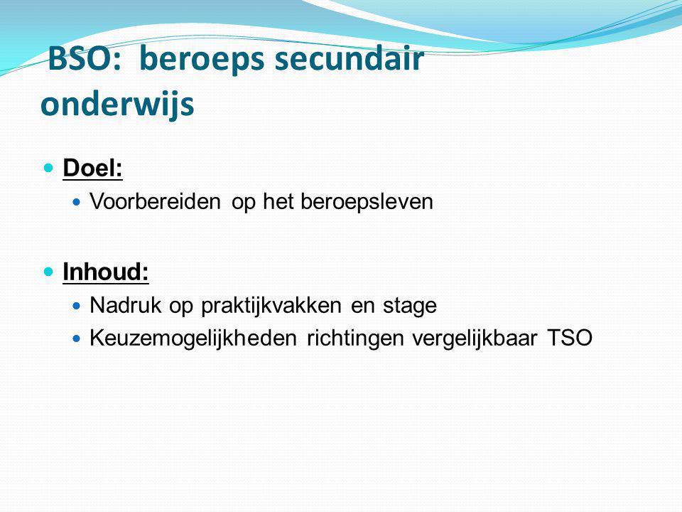 BSO: beroeps secundair onderwijs  Doel:  Voorbereiden op het beroepsleven  Inhoud:  Nadruk op praktijkvakken en stage  Keuzemogelijkheden richtin