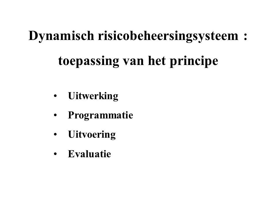 Dynamisch risicobeheersingsysteem : domeinen * Welzijn :* Niveaus : - veiligheid- volledige organisatie - gezondheid- werkposten - psychosociale factoren- werknemer - ergonomie - industriële hygiëne - verfraaiing - leefmilieu