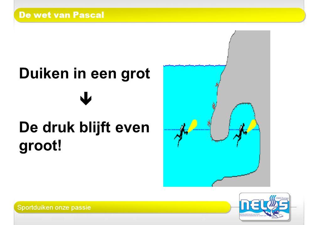 Sportduiken onze passie De wet van Pascal Duiken in een grot  De druk blijft even groot!