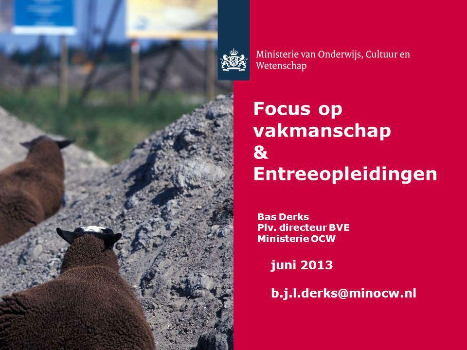 Focus op vakmanschap & Entreeopleidingen Bas Derks Plv. directeur BVE Ministerie OCW juni 2013 b.j.l.derks@minocw.nl