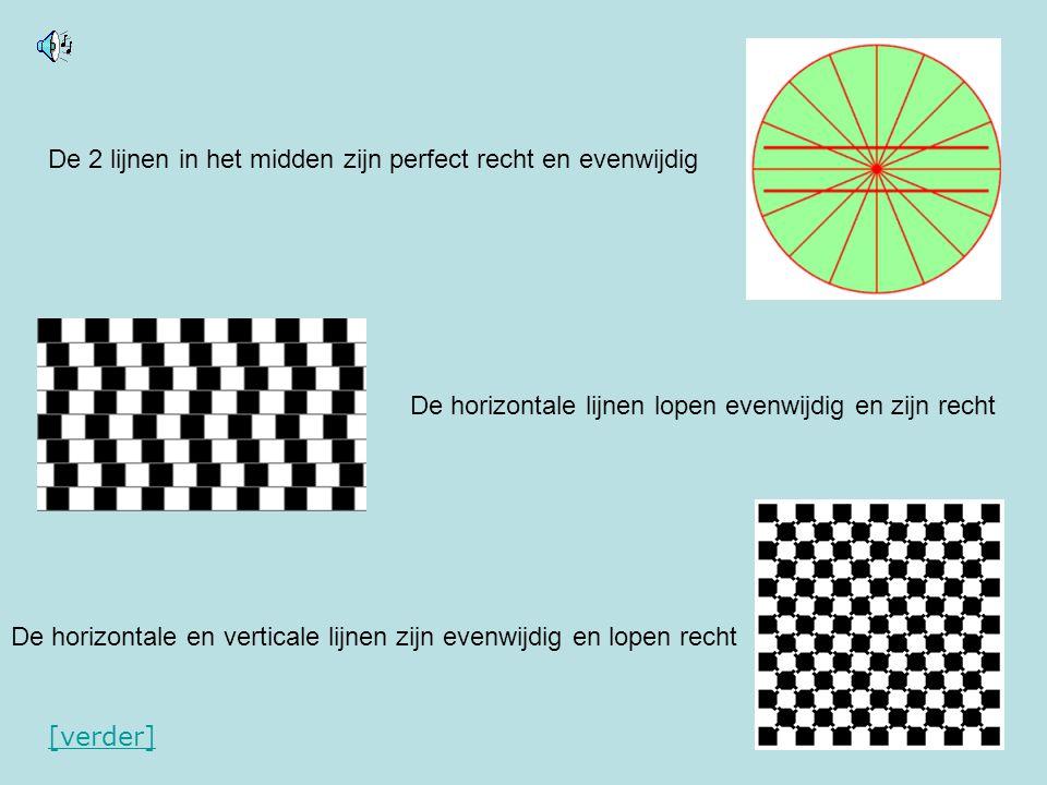 De 2 lijnen in het midden zijn perfect recht en evenwijdig De horizontale lijnen lopen evenwijdig en zijn recht De horizontale en verticale lijnen zij