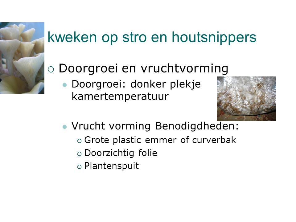 kweken op stro en houtsnippers  Doorgroei en vruchtvorming  Doorgroei: donker plekje kamertemperatuur  Vrucht vorming Benodigdheden:  Grote plasti
