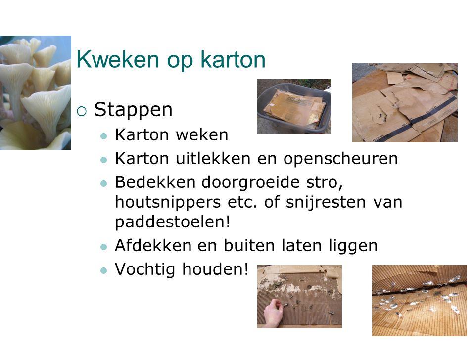Kweken op karton  Stappen  Karton weken  Karton uitlekken en openscheuren  Bedekken doorgroeide stro, houtsnippers etc. of snijresten van paddesto