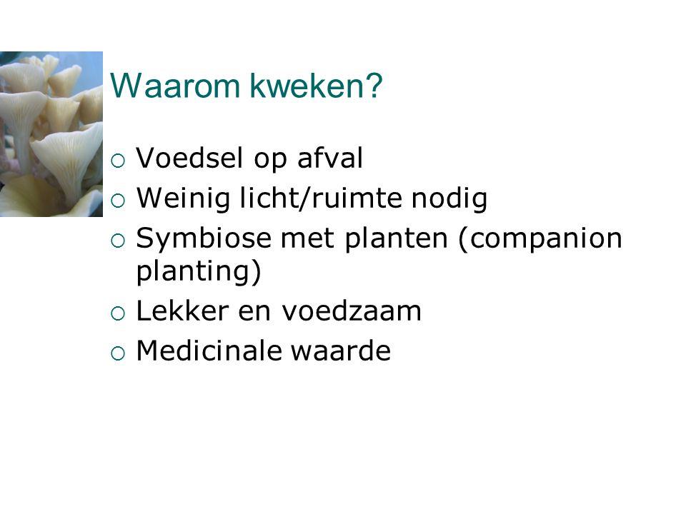 Waarom kweken?  Voedsel op afval  Weinig licht/ruimte nodig  Symbiose met planten (companion planting)  Lekker en voedzaam  Medicinale waarde