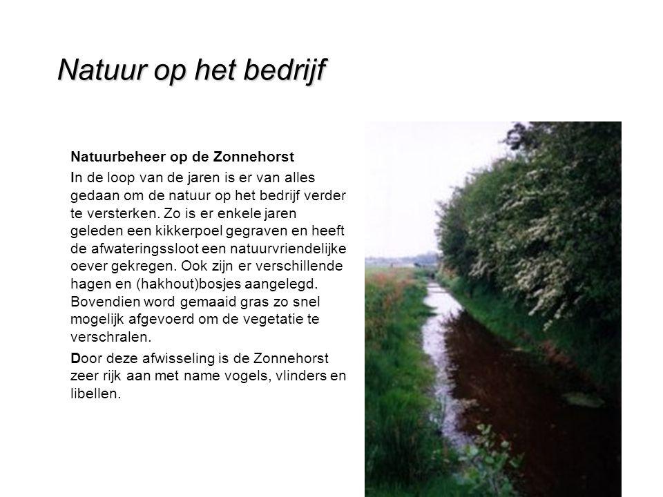 Natuur op het bedrijf Natuurbeheer op de Zonnehorst In de loop van de jaren is er van alles gedaan om de natuur op het bedrijf verder te versterken.
