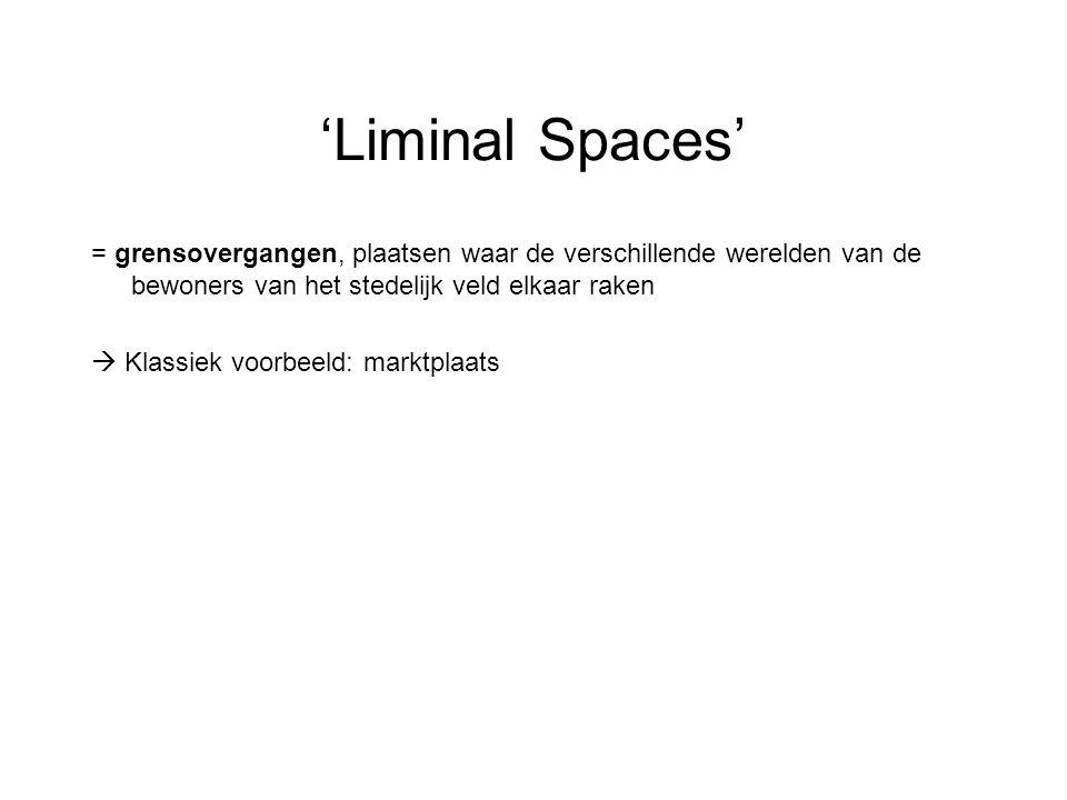 'Liminal Spaces' = grensovergangen, plaatsen waar de verschillende werelden van de bewoners van het stedelijk veld elkaar raken  Klassiek voorbeeld: