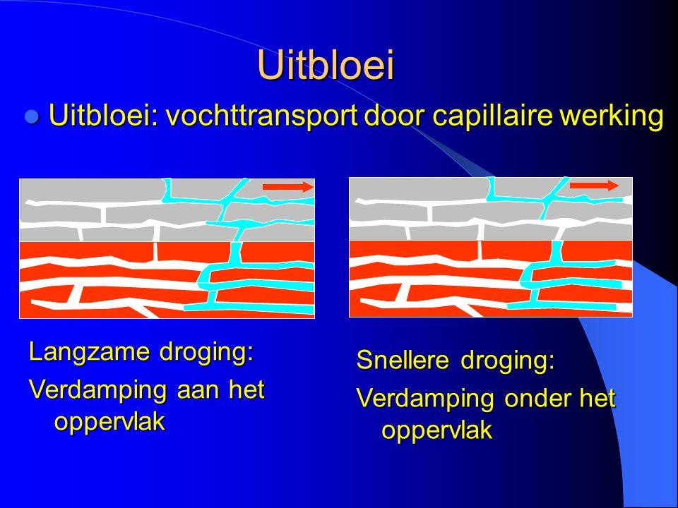 Uitbloei  Uitbloei: vochttransport door capillaire werking Langzame droging: Verdamping aan het oppervlak Snellere droging: Verdamping onder het oppe