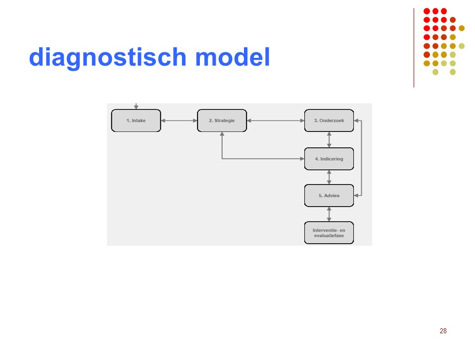 28 diagnostisch model
