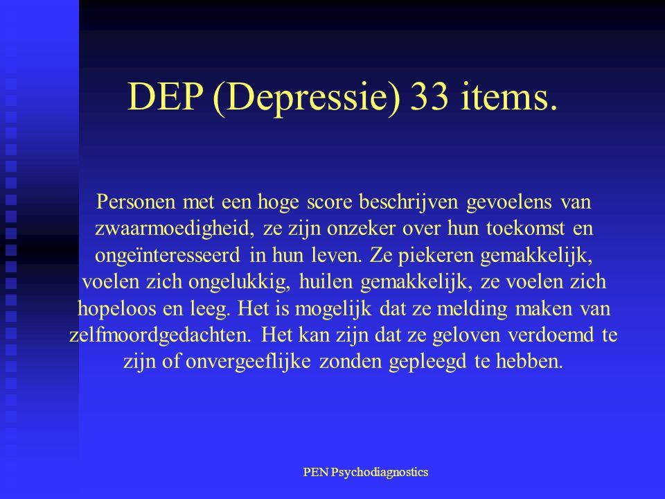 PEN Psychodiagnostics Personen met een hoge score beschrijven gevoelens van zwaarmoedigheid, ze zijn onzeker over hun toekomst en ongeïnteresseerd in