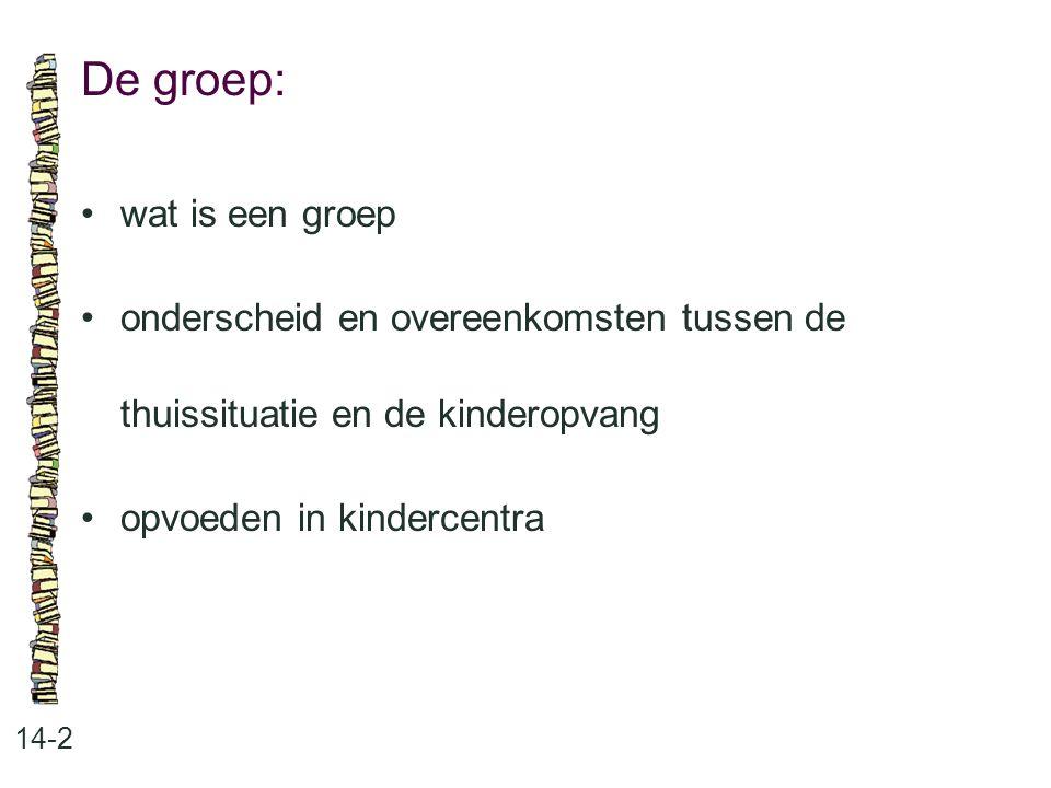 De groep: 14-2 •wat is een groep •onderscheid en overeenkomsten tussen de thuissituatie en de kinderopvang •opvoeden in kindercentra
