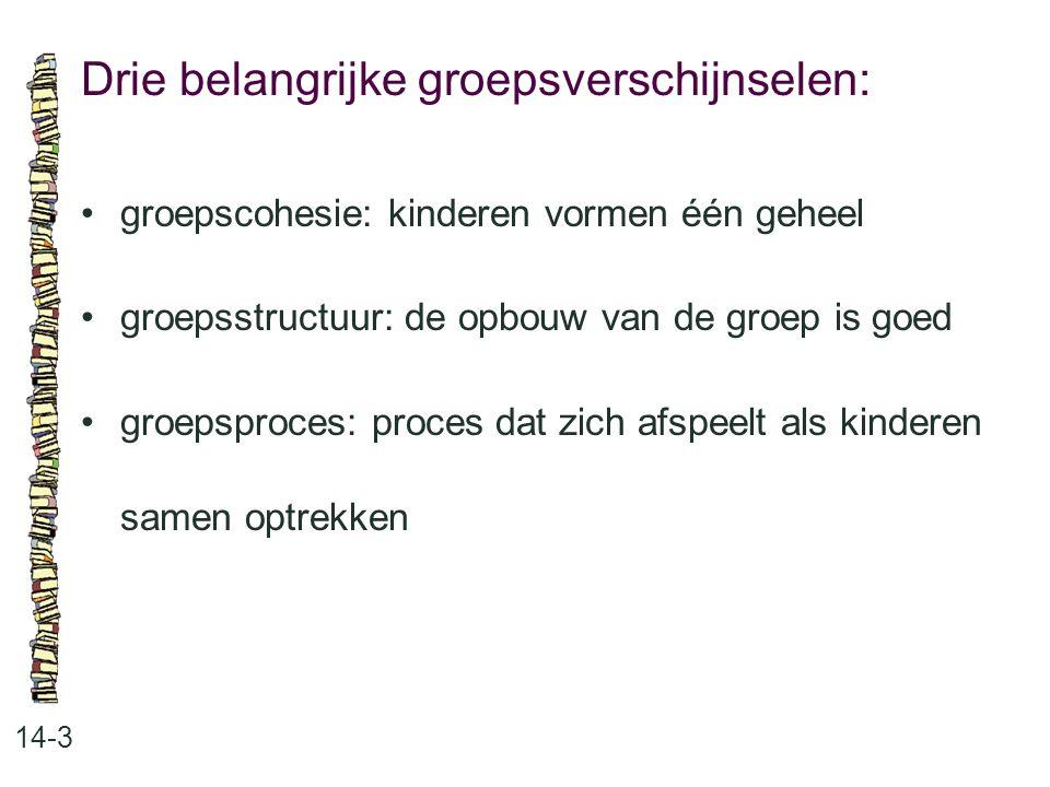 Drie belangrijke groepsverschijnselen: 14-3 •groepscohesie: kinderen vormen één geheel •groepsstructuur: de opbouw van de groep is goed •groepsproces: