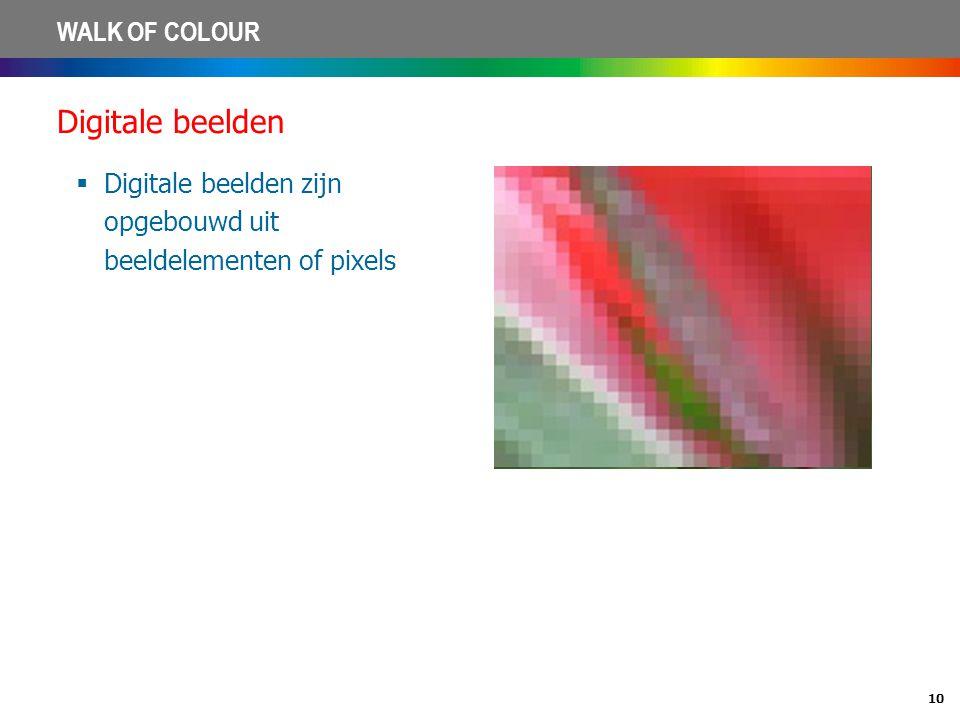 10 WALK OF COLOUR Digitale beelden  Digitale beelden zijn opgebouwd uit beeldelementen of pixels