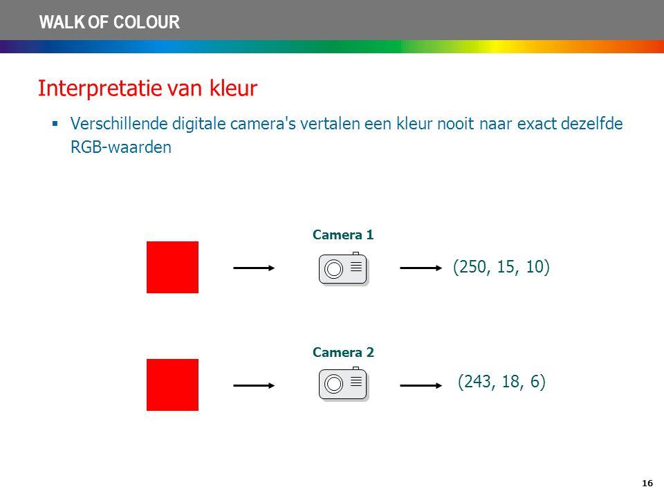 16 WALK OF COLOUR Interpretatie van kleur  Verschillende digitale camera's vertalen een kleur nooit naar exact dezelfde RGB-waarden (243, 18, 6) (250