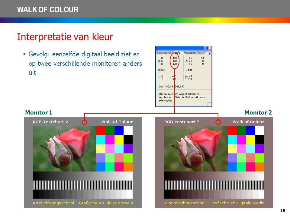 18 WALK OF COLOUR Interpretatie van kleur  Gevolg: eenzelfde digitaal beeld ziet er op twee verschillende monitoren anders uit Monitor 1Monitor 2