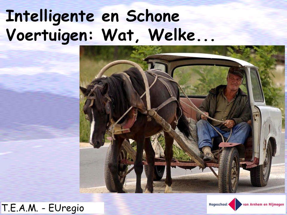 T.E.A.M. - EUregio Intelligente en Schone Voertuigen: Wat, Welke...
