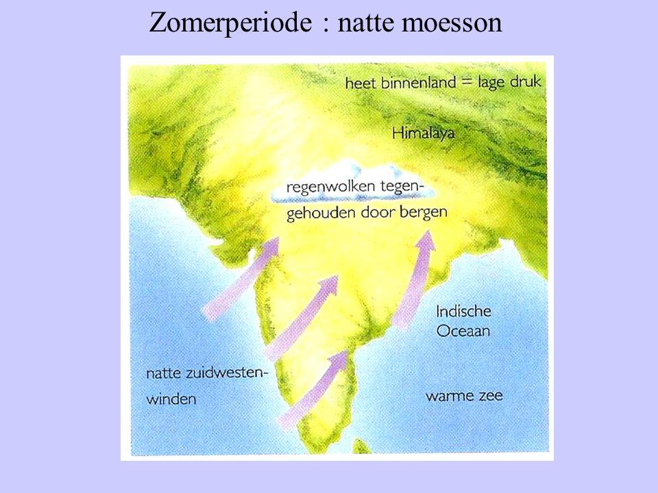 Zomerperiode : natte moesson