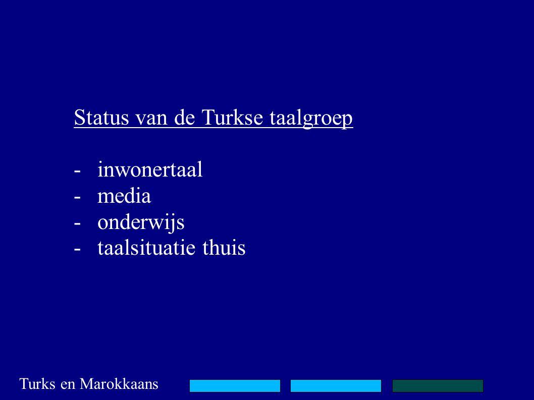 Status van de Turkse taalgroep -inwonertaal -media -onderwijs -taalsituatie thuis