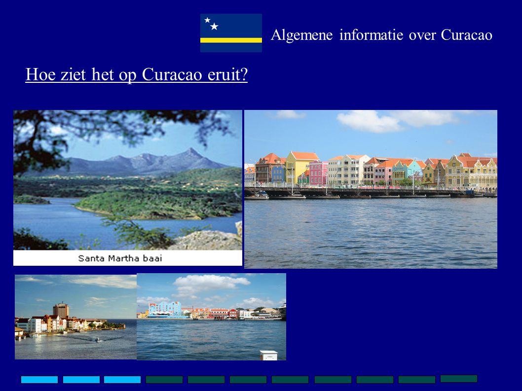 Hoe ziet het op Curacao eruit Algemene informatie over Curacao