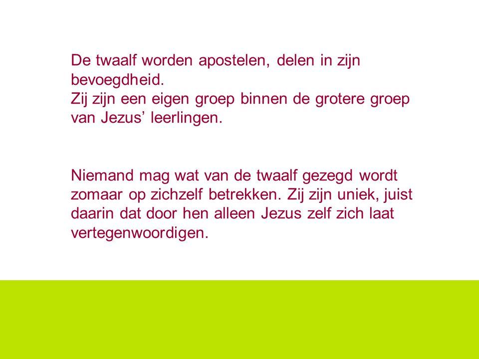 De twaalf worden apostelen, delen in zijn bevoegdheid. Zij zijn een eigen groep binnen de grotere groep van Jezus' leerlingen. Niemand mag wat van de
