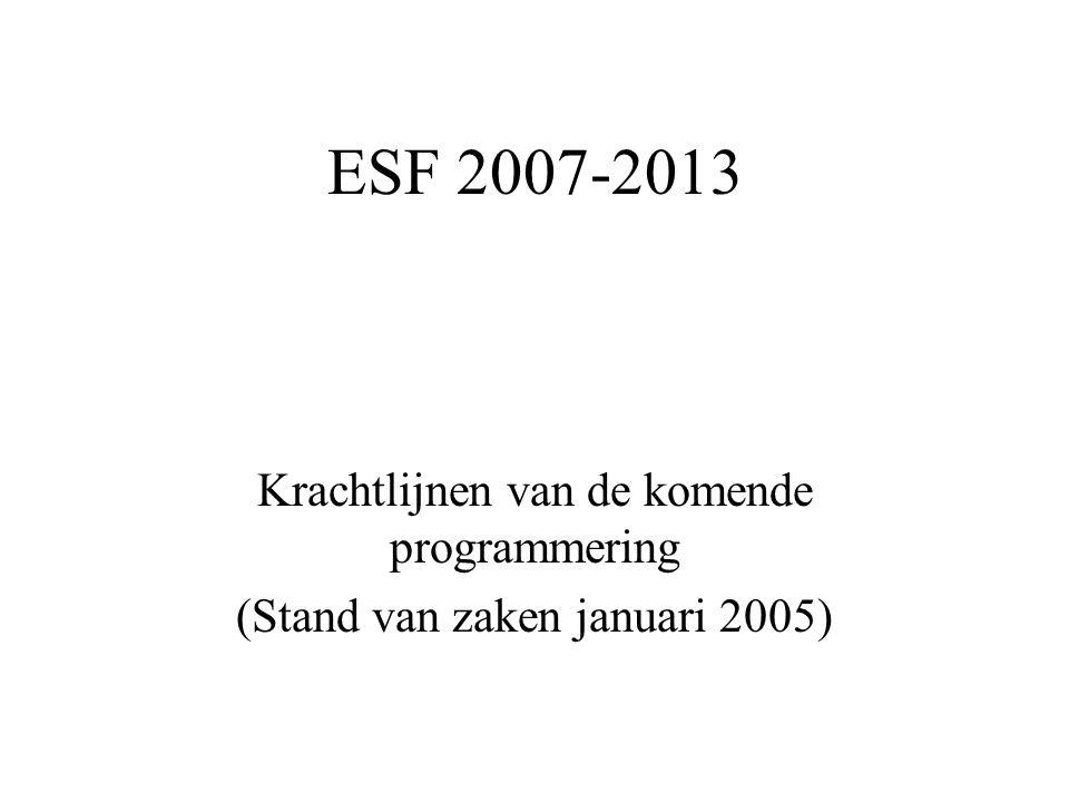 ESF 2007-2013 Krachtlijnen van de komende programmering (Stand van zaken januari 2005)