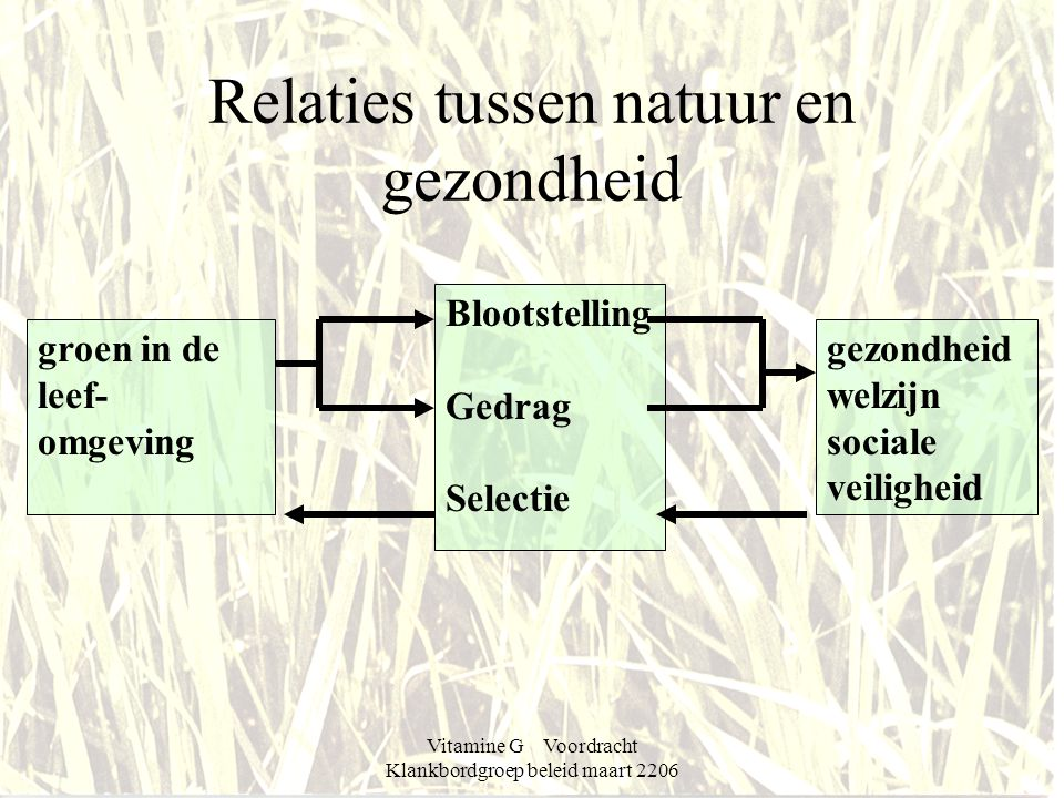 Vitamine G Voordracht Klankbordgroep beleid maart 2206 Relaties tussen natuur en gezondheid groen in de leef- omgeving gezondheid welzijn sociale veiligheid Blootstelling Gedrag Selectie