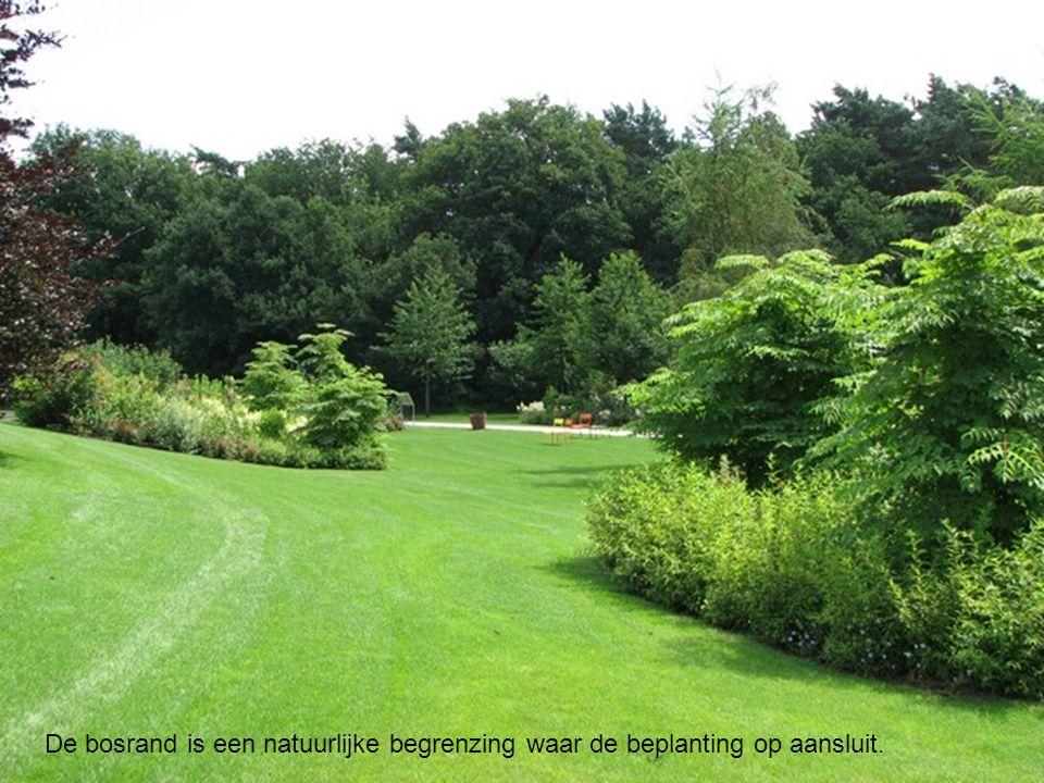 De bosrand is een natuurlijke begrenzing waar de beplanting op aansluit.