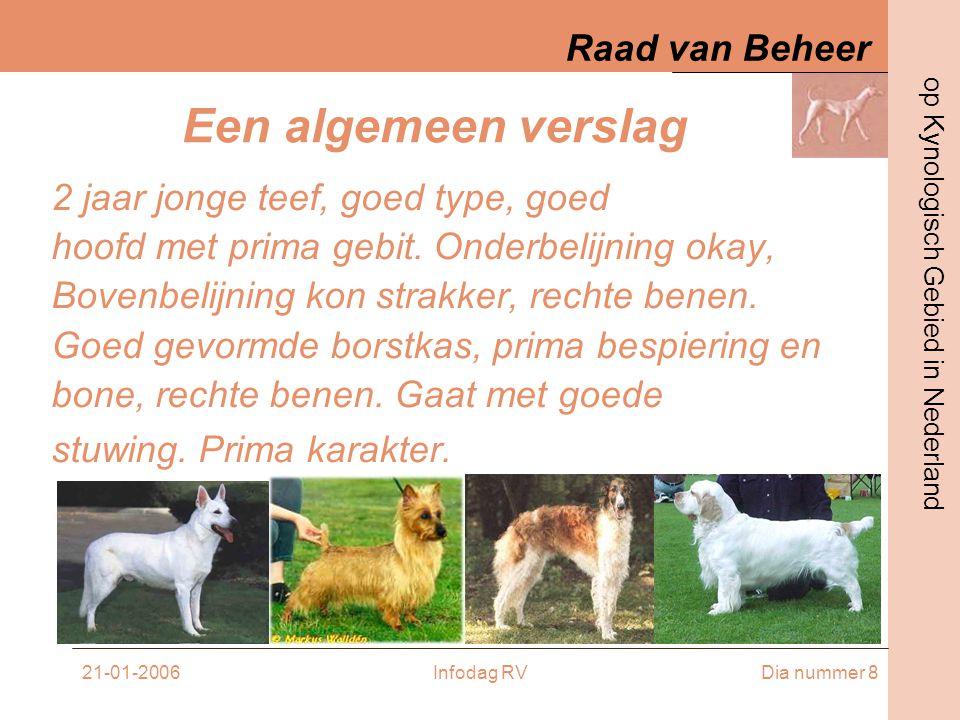 Raad van Beheer op Kynologisch Gebied in Nederland 21-01-2006Infodag RVDia nummer 9 Een rastypisch verslag 2 jaar jonge teef, prima rasbeeld.