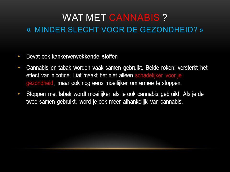 WAT MET CANNABIS ? « MINDER SLECHT VOOR DE GEZONDHEID? » • Bevat ook kankerverwekkende stoffen • Cannabis en tabak worden vaak samen gebruikt. Beide r