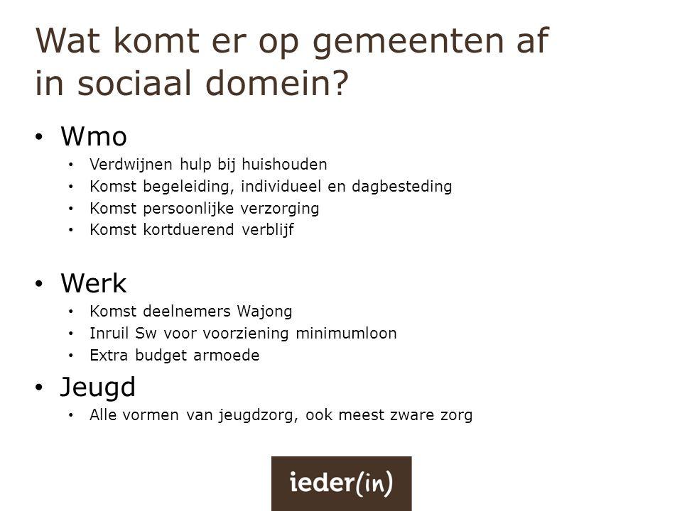 Wat komt er op gemeenten af in sociaal domein? • Wmo • Verdwijnen hulp bij huishouden • Komst begeleiding, individueel en dagbesteding • Komst persoon