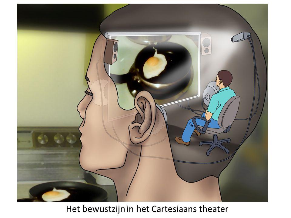 Vooronderstelling bij vrije wil als bewuste aansturing 1.De mens wordt aangestuurd door zijn bewustzijn, dat zich op een bepaalde plaats in de hersenen bevindt en dat op een bepaald moment een beslissing neemt.