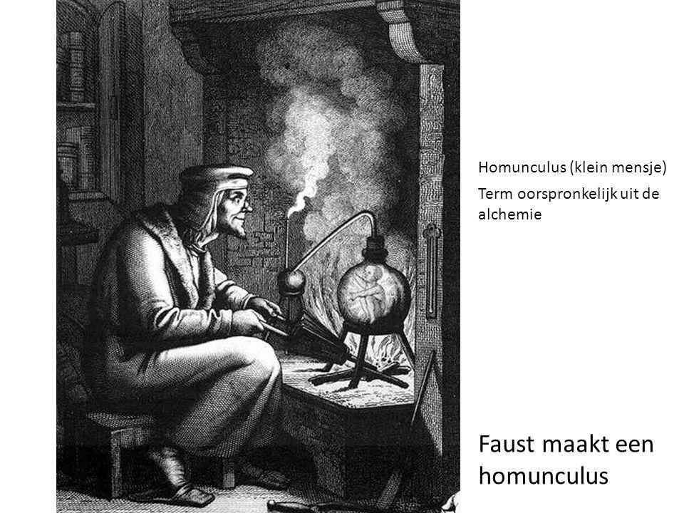 Faust maakt een homunculus Homunculus (klein mensje) Term oorspronkelijk uit de alchemie