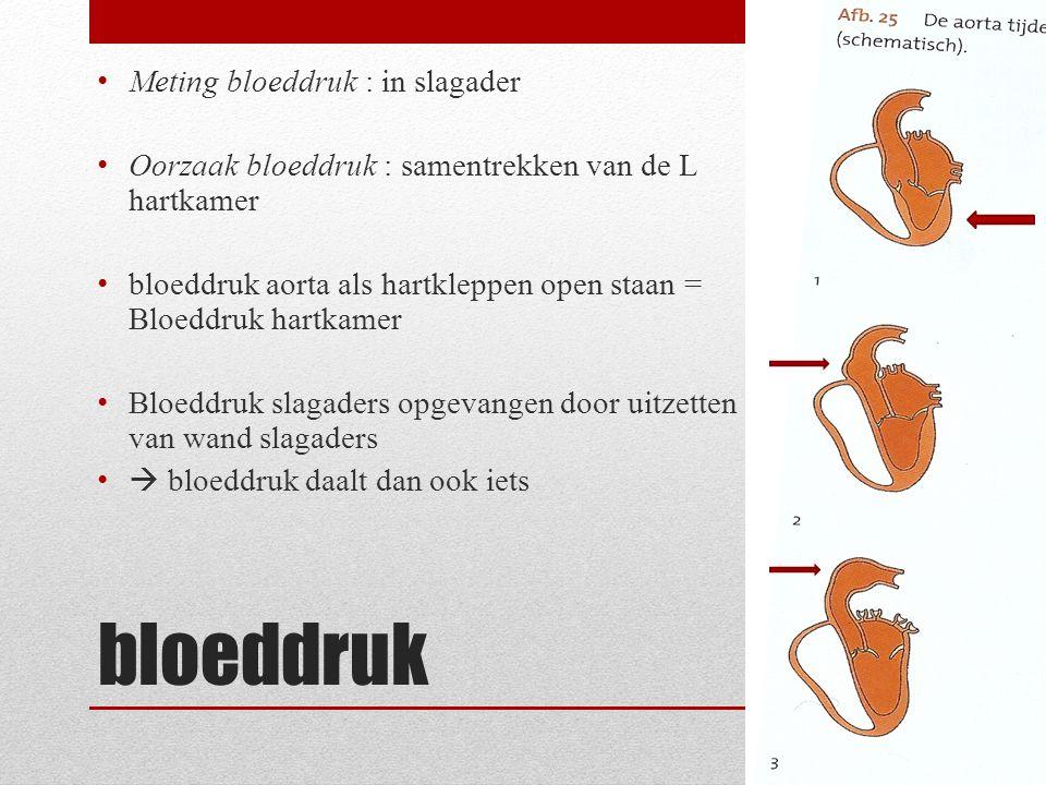 bloeddruk • Meting bloeddruk : in slagader • Oorzaak bloeddruk : samentrekken van de L hartkamer • bloeddruk aorta als hartkleppen open staan = Bloedd