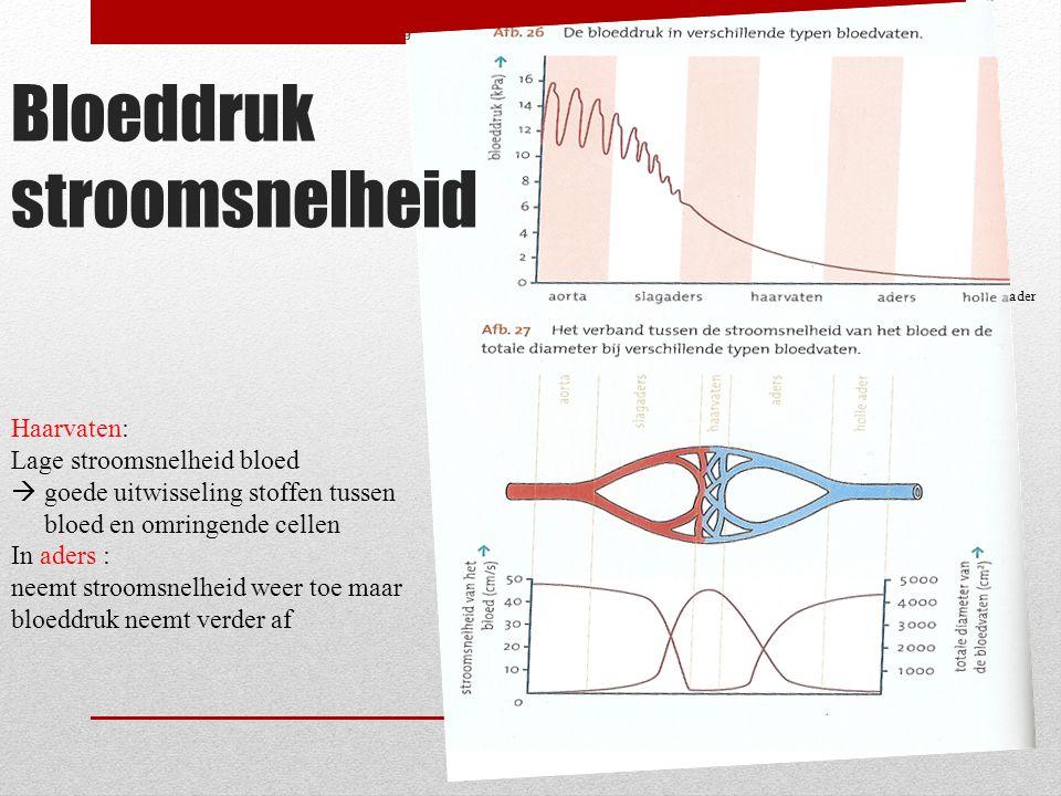 Bloeddruk stroomsnelheid ader Haarvaten: Lage stroomsnelheid bloed  goede uitwisseling stoffen tussen bloed en omringende cellen In aders : neemt str