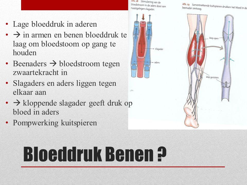 Bloeddruk Benen ? • Lage bloeddruk in aderen •  in armen en benen bloeddruk te laag om bloedstoom op gang te houden • Beenaders  bloedstroom tegen z