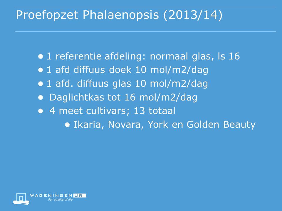 Proefopzet Phalaenopsis (2013/14) ● 1 referentie afdeling: normaal glas, ls 16 ● 1 afd diffuus doek 10 mol/m2/dag ● 1 afd. diffuus glas 10 mol/m2/dag