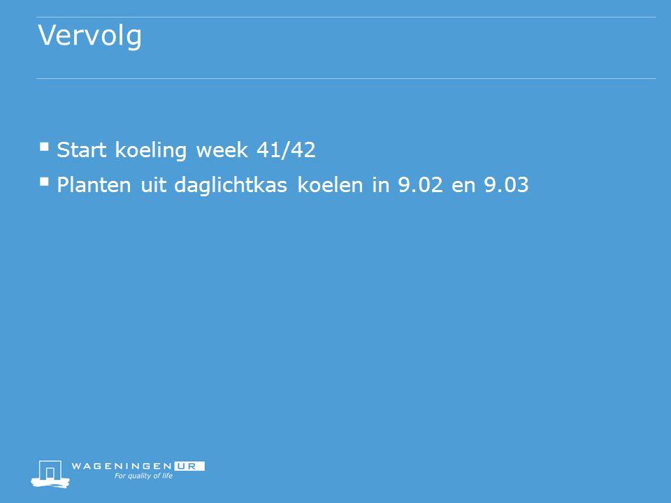 Vervolg  Start koeling week 41/42  Planten uit daglichtkas koelen in 9.02 en 9.03