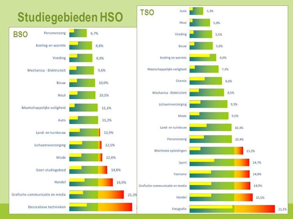 Studiegebieden HSO 10 BSO TSO
