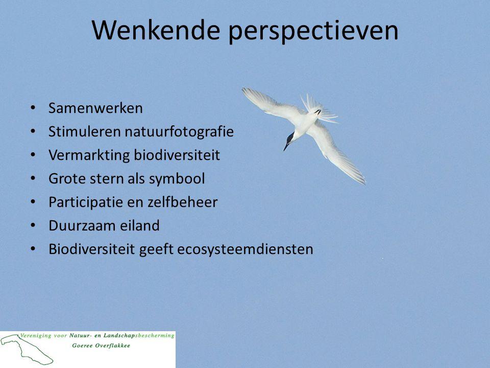 Wenkende perspectieven • Samenwerken • Stimuleren natuurfotografie • Vermarkting biodiversiteit • Grote stern als symbool • Participatie en zelfbeheer