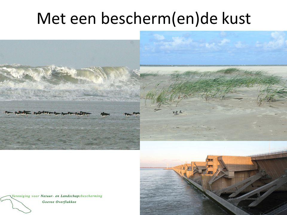Met een bescherm(en)de kust