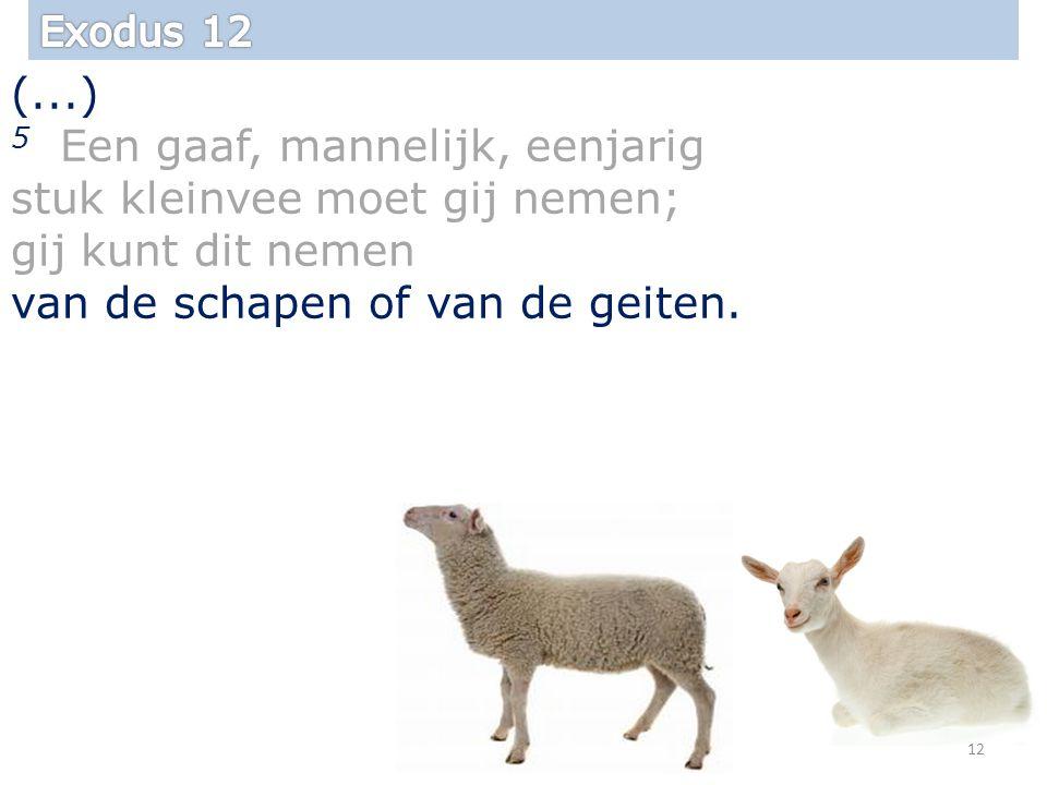 (...) 5 Een gaaf, mannelijk, eenjarig stuk kleinvee moet gij nemen; gij kunt dit nemen van de schapen of van de geiten.