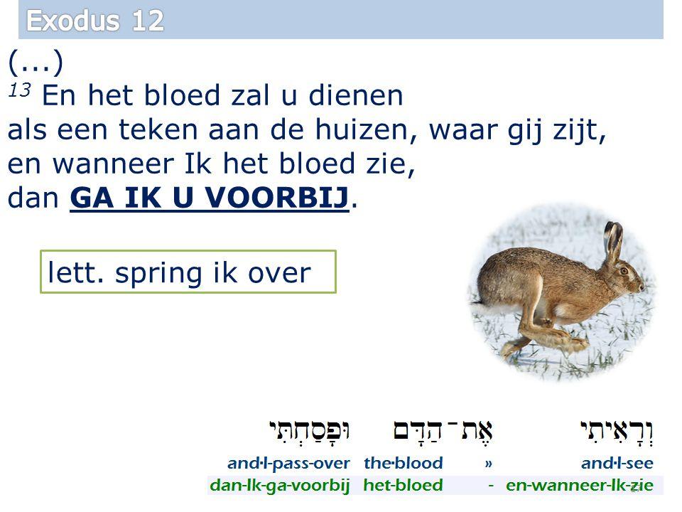 (...) 13 En het bloed zal u dienen als een teken aan de huizen, waar gij zijt, en wanneer Ik het bloed zie, dan GA IK U VOORBIJ.