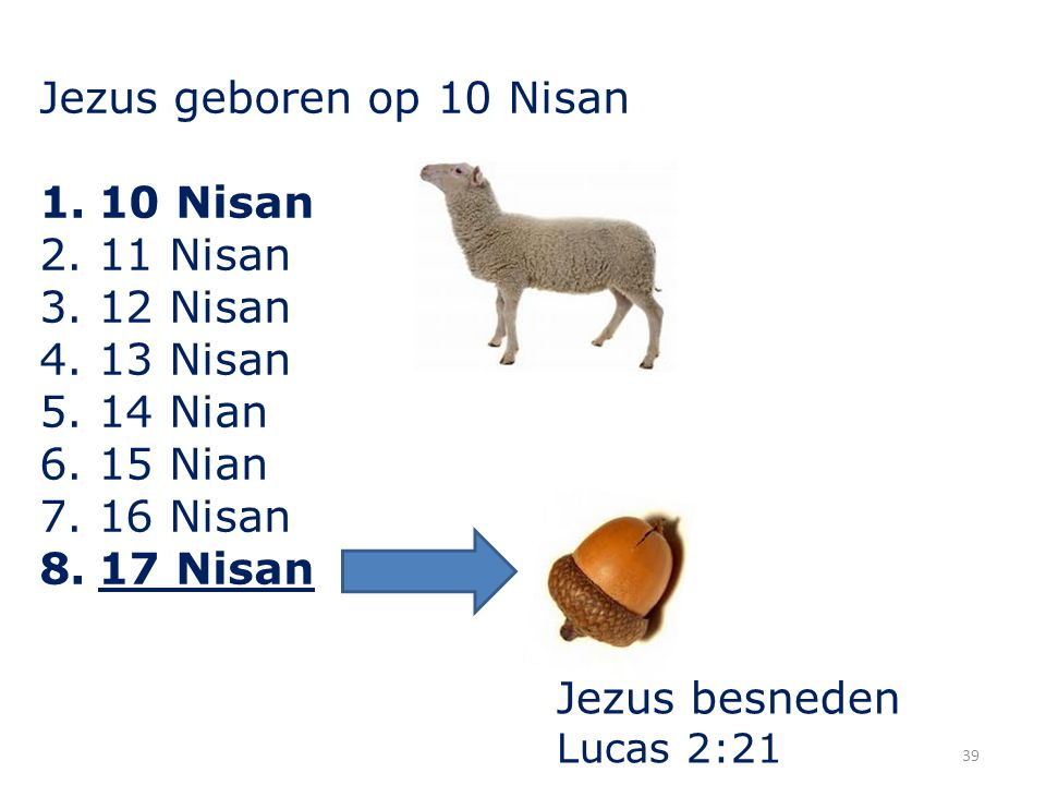 39 Jezus geboren op 10 Nisan 1.10 Nisan 2.11 Nisan 3.12 Nisan 4.13 Nisan 5.14 Nian 6.15 Nian 7.16 Nisan 8.17 Nisan Jezus besneden Lucas 2:21