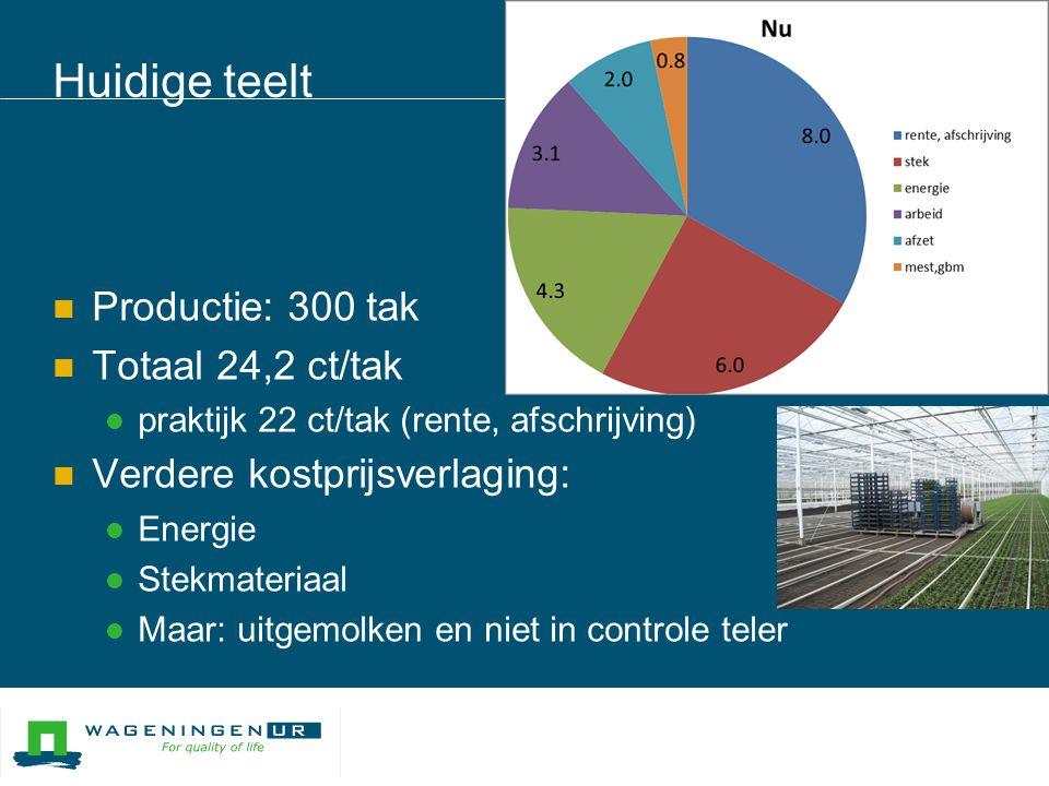 High Tech  Productie: 380 tak  Totaal 22,9 ct/tak  High tech:  Direct stek  Cassette of drijvend  Teeltcompartimenten voor optimale sturing  Mobiel / oogstmechanisatie  Verdere kostprijsverlaging:  Financiele constructies  Betere teeltsturing